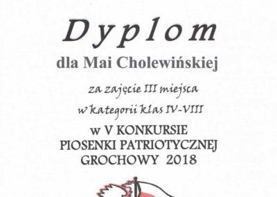 konkurs grochowy 2018-2019 16