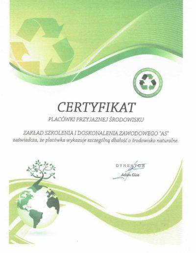 certyfikat 2018-2019 10