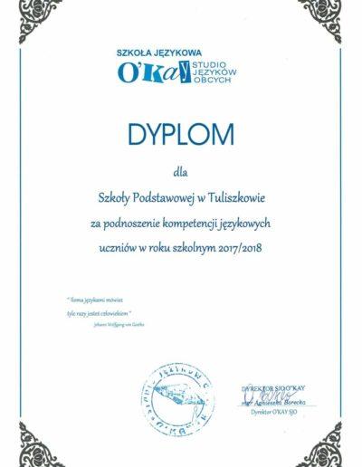 certyfikat 2018-2019 8