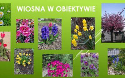 Wiosna wobiektywie